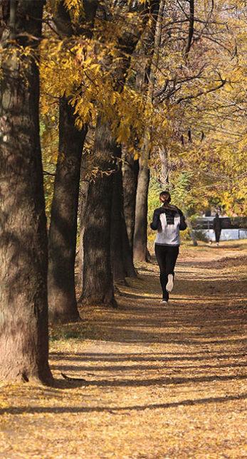 Frau joggt durch den Herbstwald.